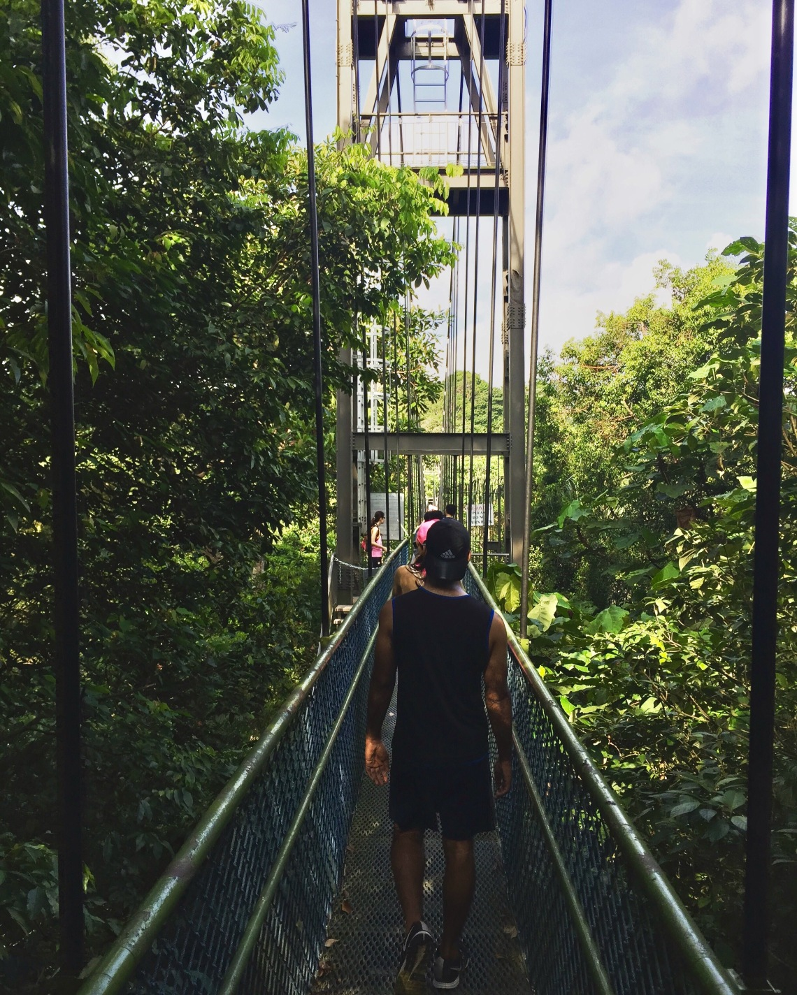 MacRitcie Tree Top Walk