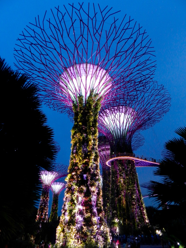 Supertree Grove Singapore blogger Findianlife