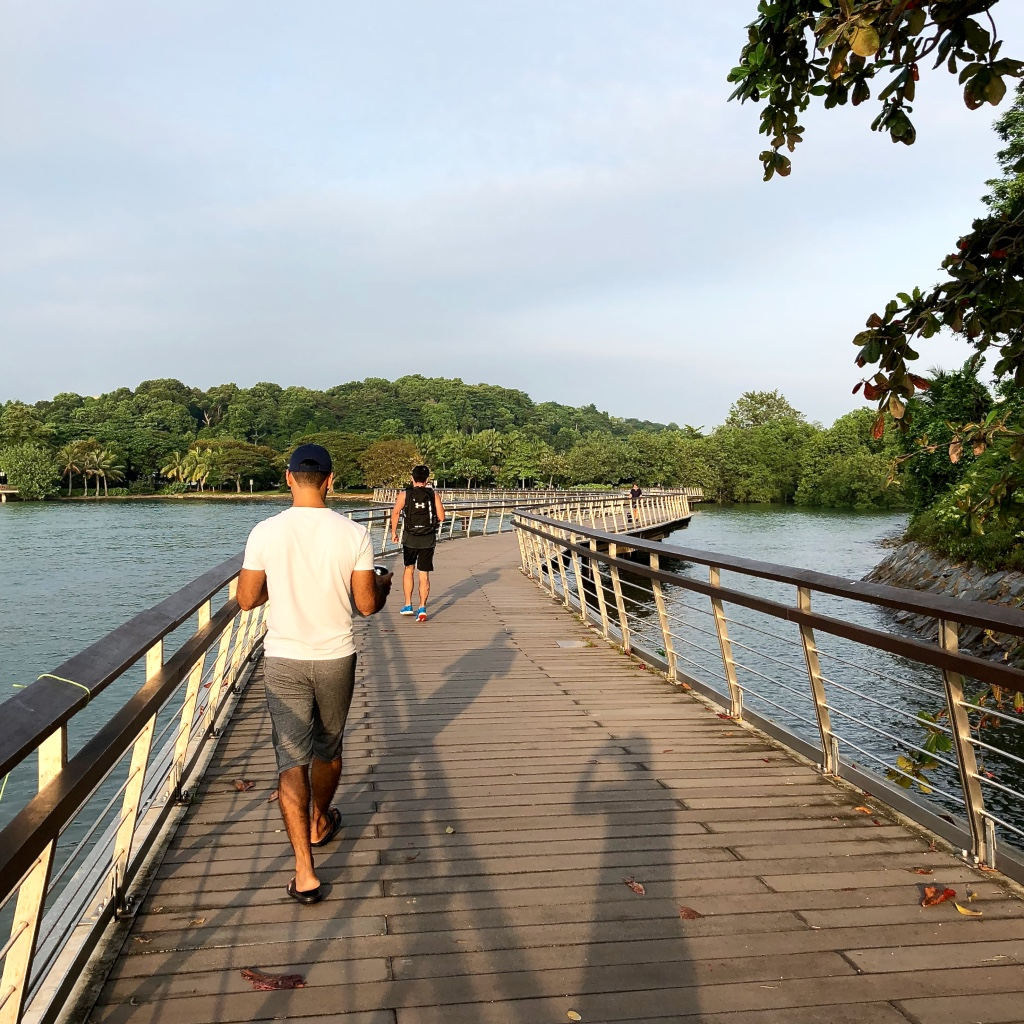 Friday walk at Bukit Chermin Boardwalk and Labrador Nature Reserve Singapore